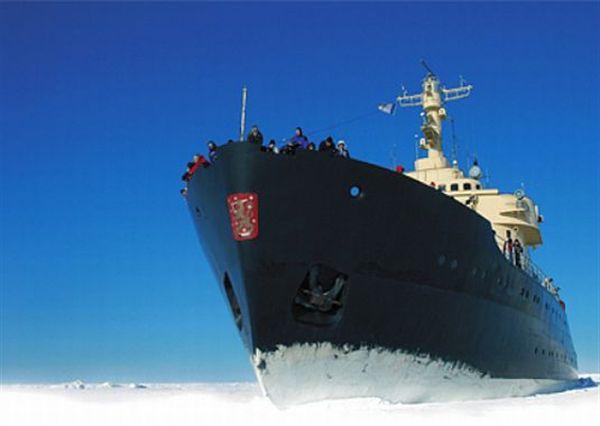 氷海遊泳と砕氷船を体験!人とは違う特別な新婚旅行へ