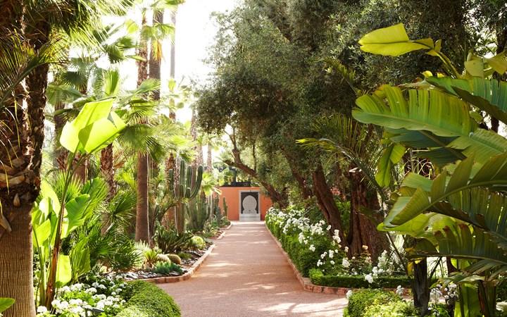 仮:美しい庭園