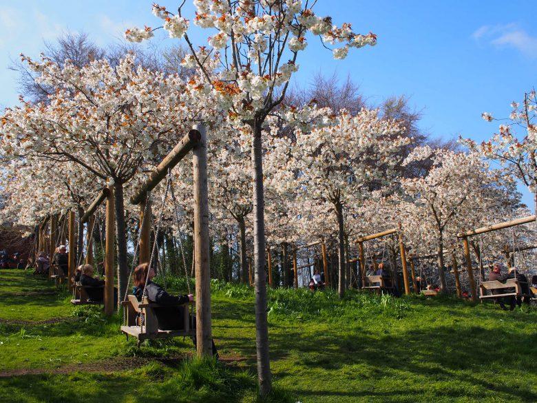 4月は桜が咲いていて、とても綺麗