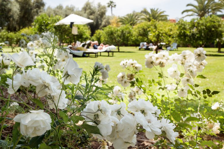 ラ・マムーニアの美しい庭園