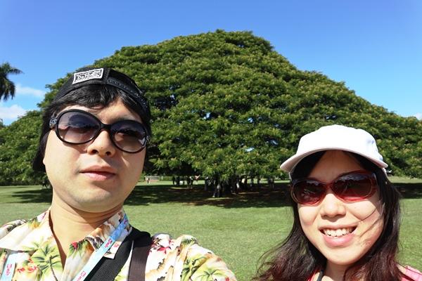 ハワイハネムーンでオプショナルツアーを楽しんで!