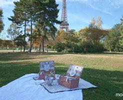 エッフェル塔が見える公園でハネムーンピクニックはいかが?