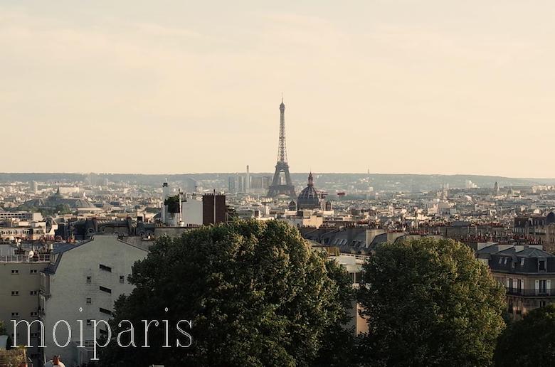 パリの市街を一望