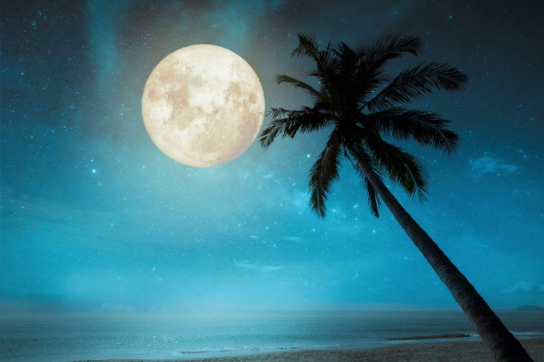 月に由来するハネムーン