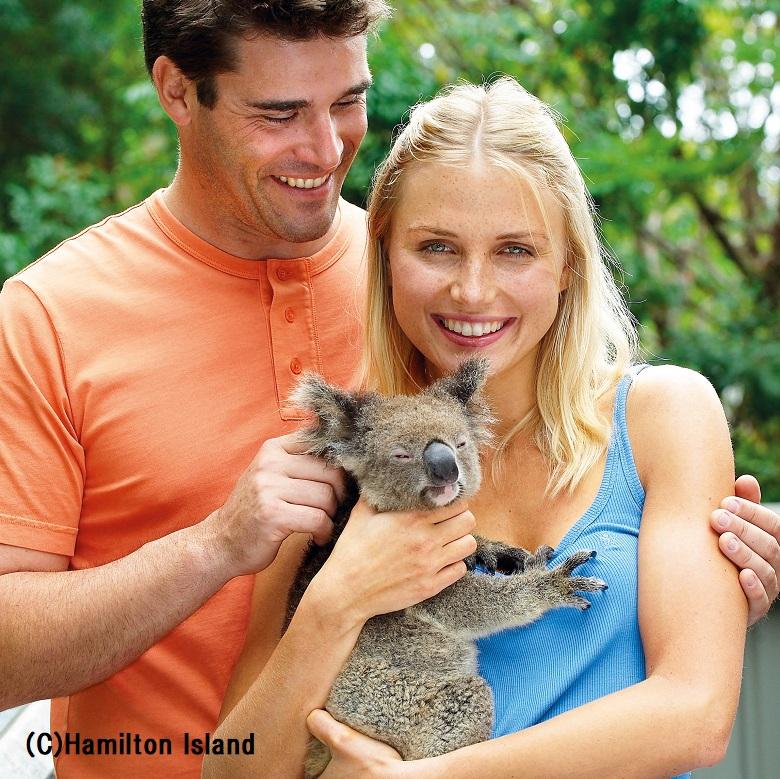 ハミルトン島の人気アクティビティ「コアラの抱っこ」