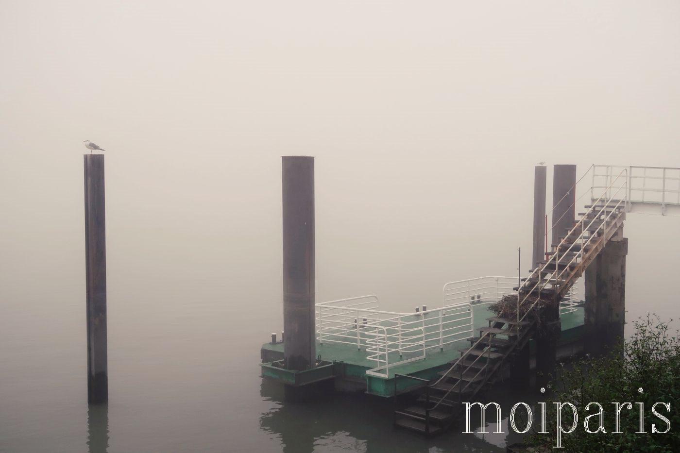 モンサンミッシェル旅行、深い霧。
