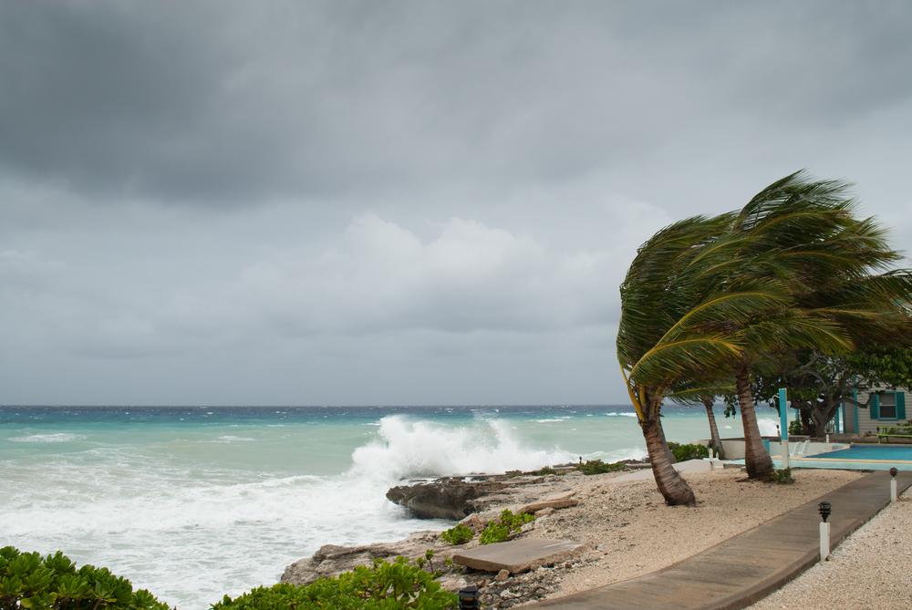 沖縄、台風。