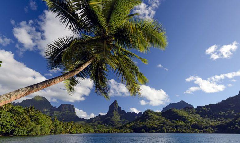 モーレア島