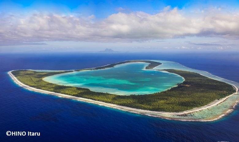 オープンハートの島・ツパイ