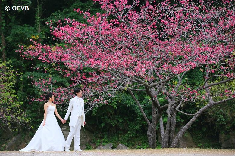 沖縄ウエディングもロマンティック
