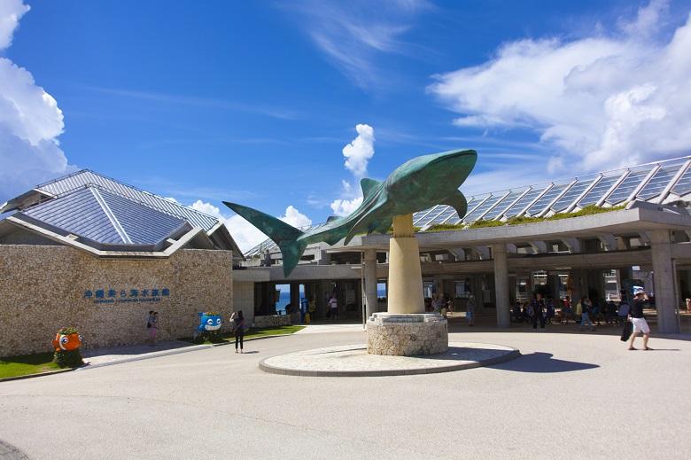 美ら海水族館も営業再開