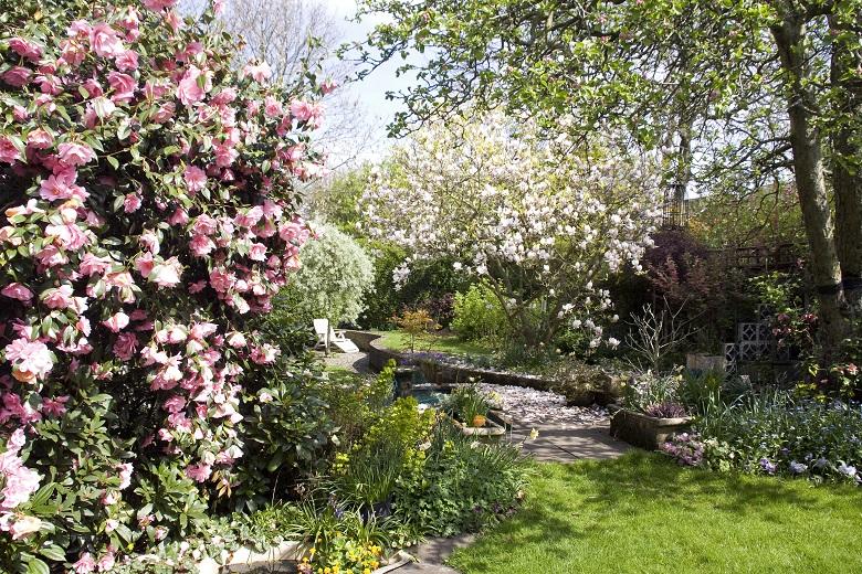 英国式庭園の主役はバラ