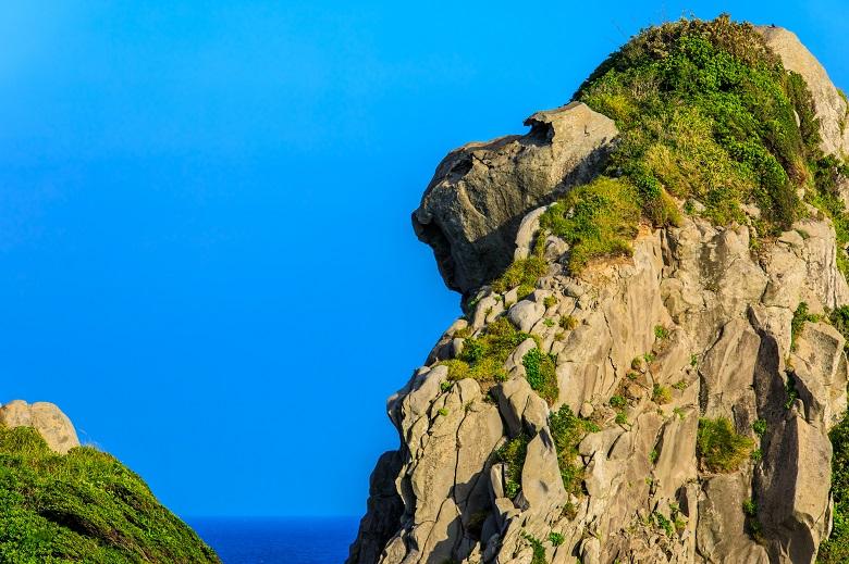 自然が創り出した猿岩
